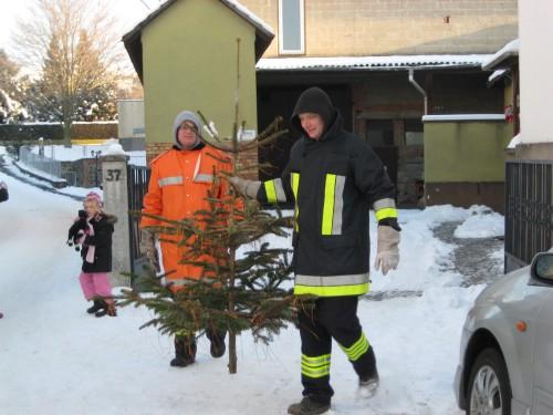 2009 Weihnachtsbäume 01