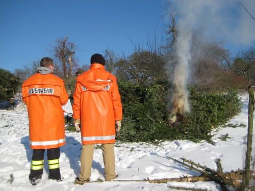 2009 Weihnachtsbäume 10