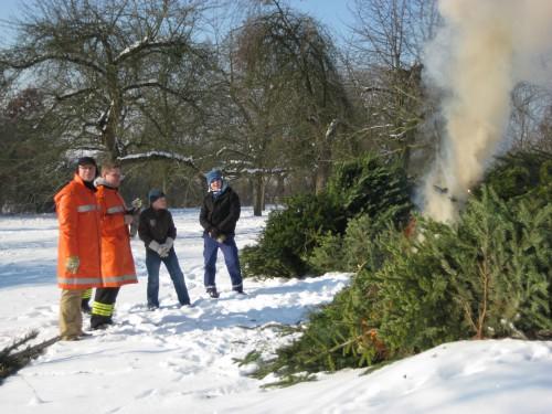 2009 Weihnachtsbäume 12