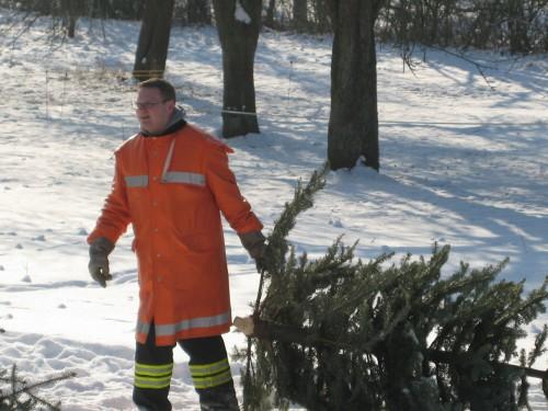 2009 Weihnachtsbäume 15
