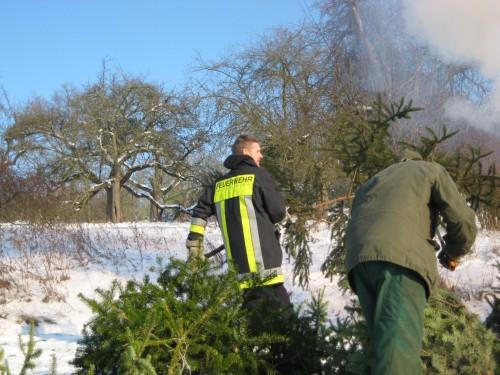 2009 Weihnachtsbäume 18