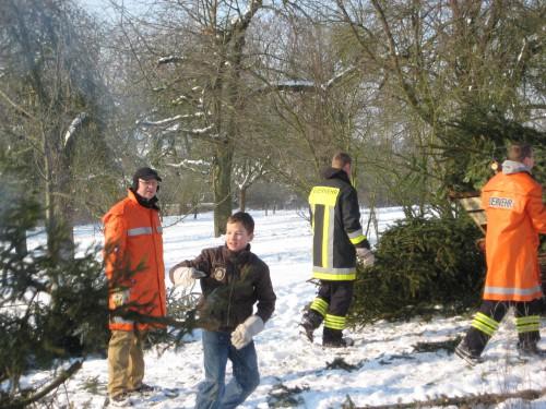2009 Weihnachtsbäume 19
