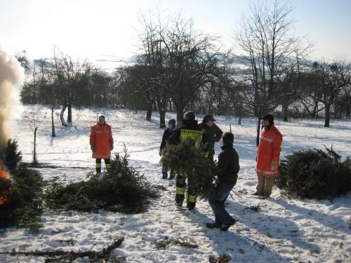 2009 Weihnachtsbäume 22