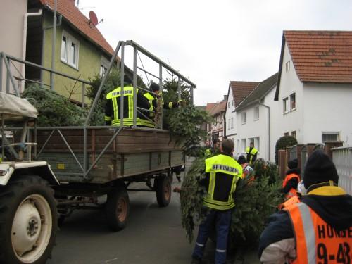 2018 Weihnachtsbäume 12