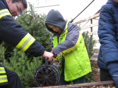 2019 Weihnachtsbäume07